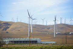 风力场在沙漠 库存照片