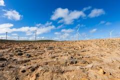 风力场在里士满,引起可再造能源的澳大利亚 免版税库存照片