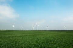 风力场 免版税库存照片