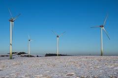 风力植物在冬天 免版税图库摄影