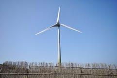 风力 免版税图库摄影
