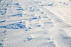 风吹的雪 库存照片