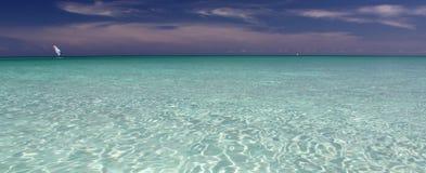 风帆冲浪在古巴 库存图片