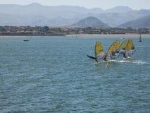 风帆冲浪在桑坦德,西班牙海湾  库存图片