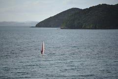 风帆冲浪在海岛附近海湾  库存图片