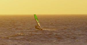 风帆冲浪在海滩4k的男性冲浪者 影视素材