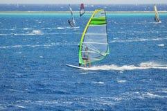 风帆冲浪的红海 免版税图库摄影