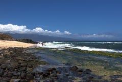 风帆冲浪者在hookipa公园进入海洋 免版税图库摄影