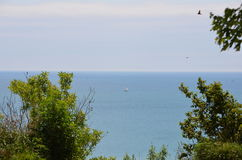 风帆在安大略湖 免版税库存照片