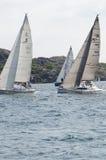 风帆竞争 图库摄影