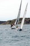 风帆竞争 免版税图库摄影