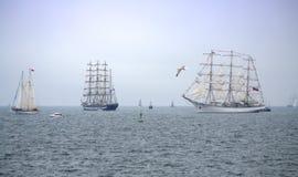 风帆美丽如画的游行  图库摄影
