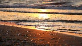 风平浪静和岸在日出或日落 股票视频