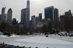 风景中央公园 库存图片