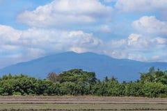 风景农村在泰国自然背景中 图库摄影