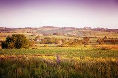 风景农村澳大利亚 免版税库存图片