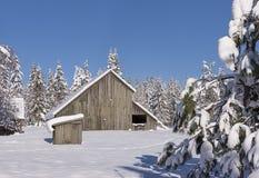 风景农村的冬天在北部爱达荷 免版税库存图片
