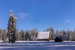 风景农村的冬天 库存图片