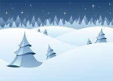 风景冬天森林地 免版税库存照片