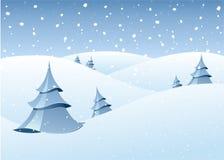 风景冬天森林地 库存照片