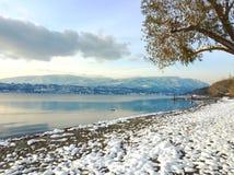 风景冬天湖和山风景 免版税库存图片