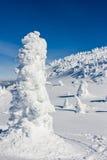 风景冬天视图在加拿大的冷的山冬天 免版税库存图片