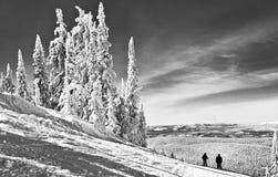 风景冬天视图在加拿大的冷的山冬天 免版税图库摄影
