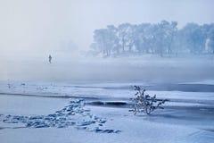 风景冬天 免版税库存图片