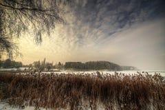 风景冬天 库存图片