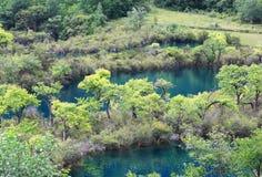 风景区的jiuzhaigou 免版税图库摄影