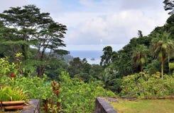 风景和大厦的印象在美妙的塞舌尔海岛上 免版税库存照片