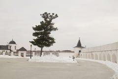 风景和建筑学在Tobolsk克里姆林宫里面 免版税图库摄影