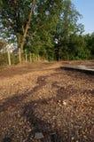 风景和自然在泰国的东部 免版税库存图片