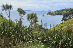 风景和风景横跨土地和水在怀希基岛N 库存图片