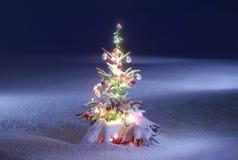 风景圣诞节的照片 免版税库存照片