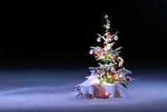 风景圣诞节的照片 免版税图库摄影