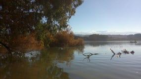 风景在一个湖在格拉纳达 库存照片