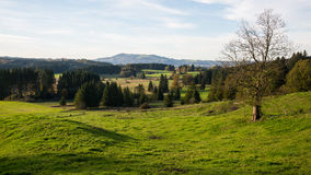 风景在上巴伐利亚行政区 库存照片