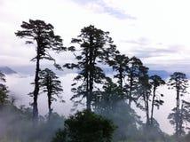 风景在不丹 免版税库存图片
