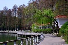 风景在公园 免版税库存图片