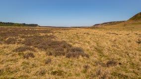 风景在北约克停泊国家公园,英国 免版税库存照片
