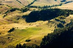 风景在南波兰 库存照片