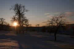 风景在反对光的冬天 免版税库存图片