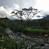 风景在巴拿马 免版税库存照片