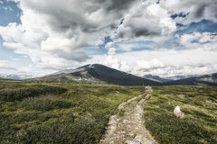 风景在拉普兰,瑞典 免版税库存照片