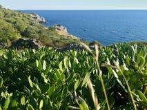 风景在普利亚,意大利 免版税库存照片