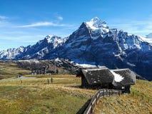 风景在格林德瓦,瑞士 库存图片