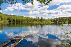 风景在白俄罗斯 免版税库存图片