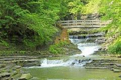风景在石溪SP 图库摄影
