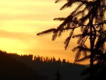 风景在罗马尼亚、夏天和冬天 免版税库存照片